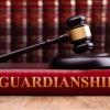Guardianship Task Force